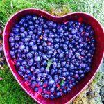 Delemor i hverdagen – fuldtidsmor i hjertet