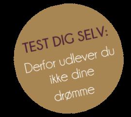 Test dig selv2